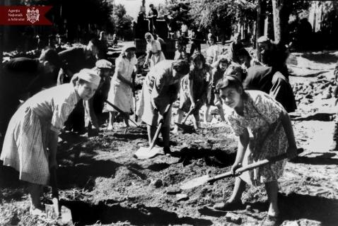 Reparația străzii Maxim Gorki (astăzi str. Maria Cebotari), 28.08.1949, or. Chișinău, indice: 9164