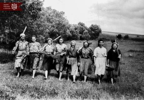 s. Morozeni, r. Orhei. (de la stânga spre dreapta)  M. E. Gașpar, E. P. Tcaciuc, E. V. Danii, M. M. Muntean, A. V. Țugui, N. D. Covali, M. I. Bujenco și N. A. Ciumac. Anul 1953, indice: 23592, autor - Bogarov